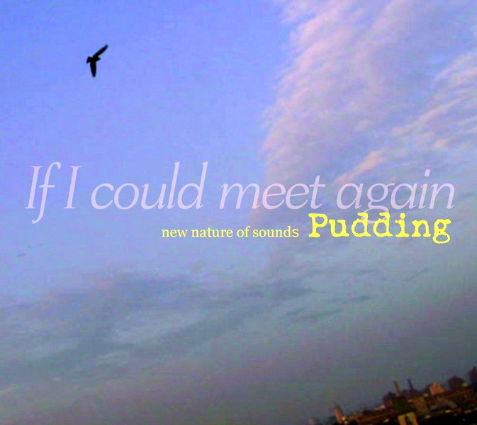 Pudding - iF I Could meet Again