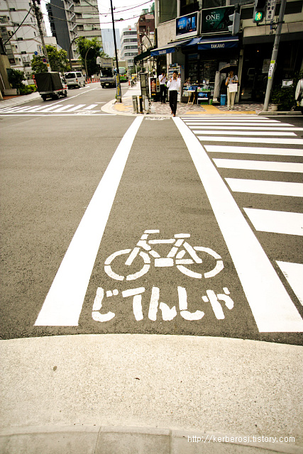 Bicycle driveway