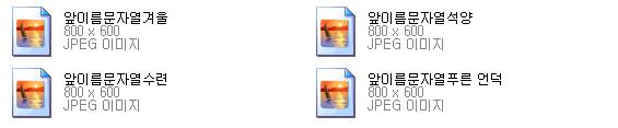 파일이름바꾸기 - 파일이름,확장자 일괄 변환하기 DarkNamer