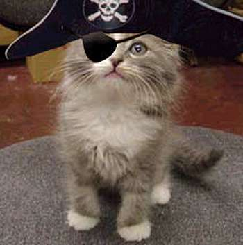 4b5907f3651b6 - Pirates of the Catribbean  - Photos Unlimited