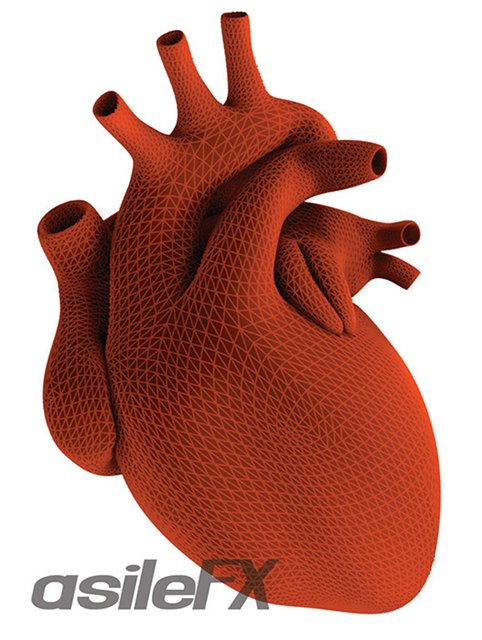 human heart art. Learn to model the human heart